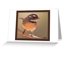 Grey Fantail Greeting Card