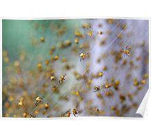 Arachno-nursery 1 Poster