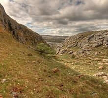 Black Head landscape by John Quinn