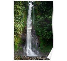 Waterfall in Bali island Poster