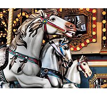 Vintage Horse Carousel Merry-Go-Round Ride  Photographic Print