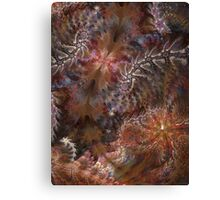 Passages to inner dimensions Canvas Print