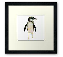 Chroma Penguin Framed Print
