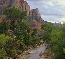 The Watchman - Zion National Park by Stephen Vecchiotti