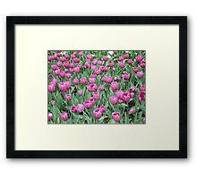 Spring Exhibition Framed Print