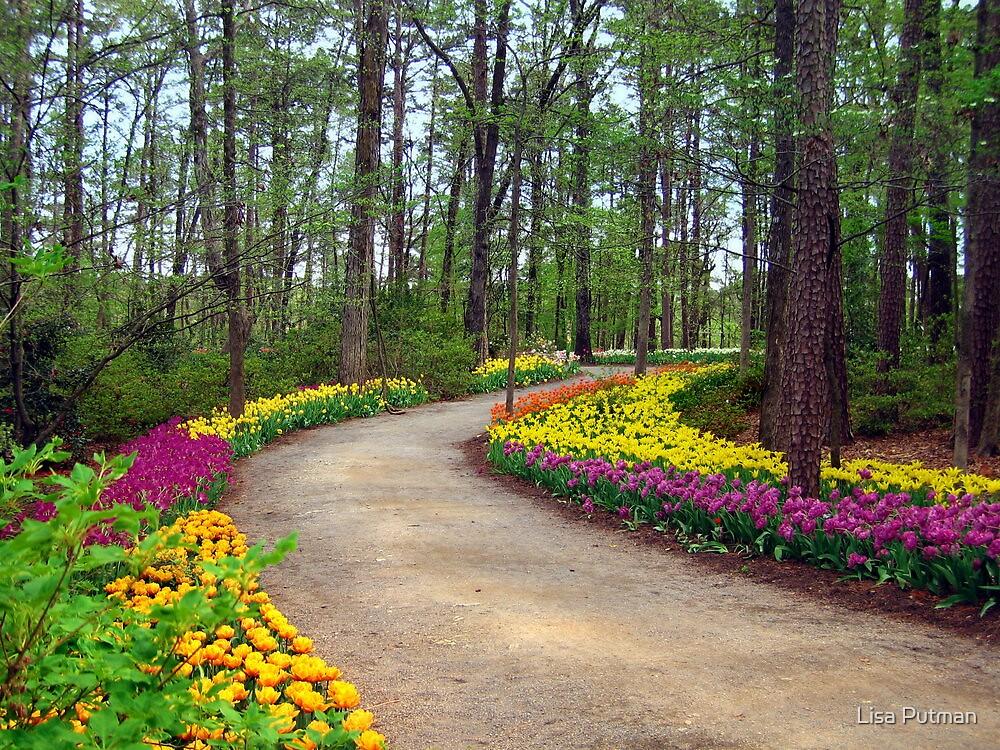 Springtime in the Garden by Lisa G. Putman
