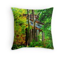 Mausoleum Throw Pillow