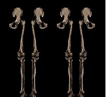 Bones by chaosdivine