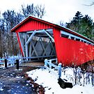 Red Bridge by Ron Waldrop
