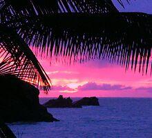 Caribbean Sunset by Robbie Labanowski