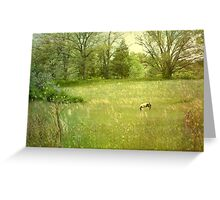 Pony Spring Greeting Card