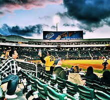 Take Me Out To The Ballgame by NancyC