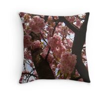 Looking Up To The Heavenly Blossoms Throw Pillow