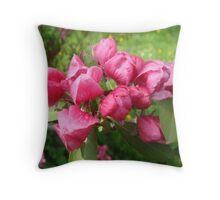 Heavenly Hawthorn Blossom Throw Pillow
