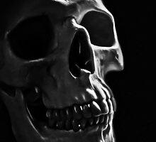 Human Skull by creepyjoe