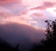 Misty Mountain Sunset by Micci Shannon