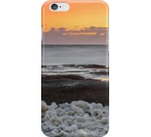 Dolphin on the Rocks - Sunshine Coast Qld Australia iPhone Case/Skin
