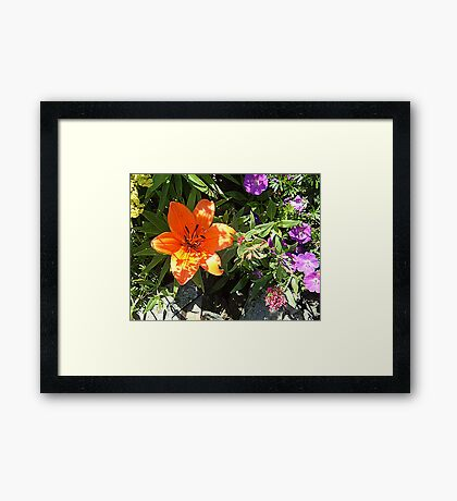 Invigorating Framed Print