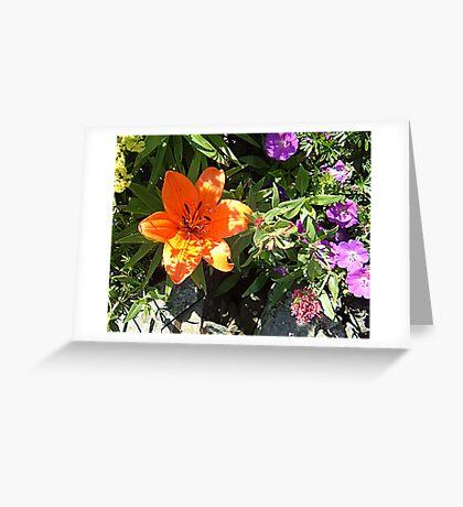 Invigorating Greeting Card