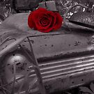 A Rose From Ruins by Sydney Piper