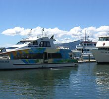 More boats at Nadi, Fiji by Camelot