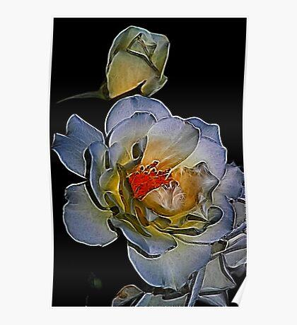 Fractalius Rose Poster