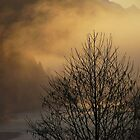 Skagit River Fog by Mike  Kinney