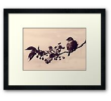 Flowered Finch Framed Print