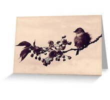 Flowered Finch Greeting Card