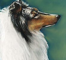 Rough Collie Pastel Painting by Charlotte Yealey