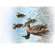 Spring arrivals out with mum Poster