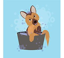 Bubble Bath Puppy Photographic Print