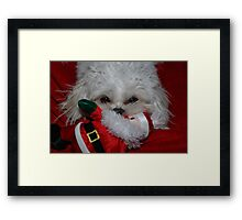 Buddy Has Santa For Christmas, what did you get? Framed Print