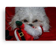Buddy Has Santa For Christmas, what did you get? Canvas Print