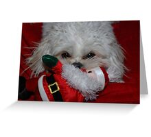 Buddy Has Santa For Christmas, what did you get? Greeting Card