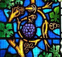 """I am the vine, you are the branches"" ~ Holy Trinity Anglican Church, Dubbo by Jan Stead JEMproductions"