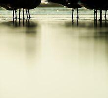 @ sea level by Jenny Miller