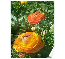 God loved the flowers and invented soil.  Man loved the flowers and invented vases Poster