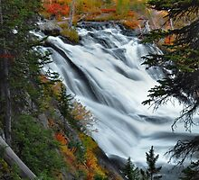Lewis Falls - Yellowstone by Stephen Vecchiotti