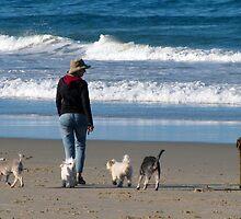 dog beach 10 by Zefira