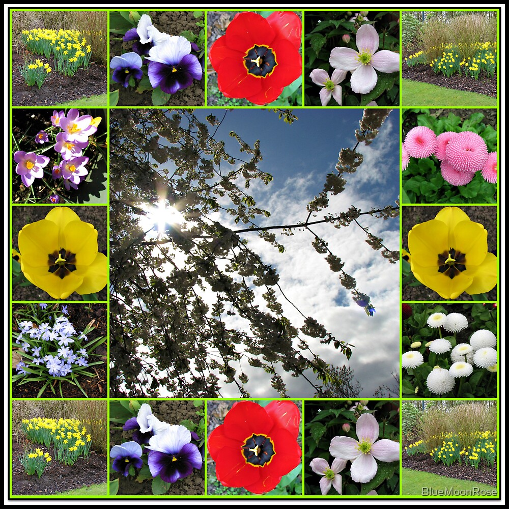 Glorious Spring Collage by BlueMoonRose