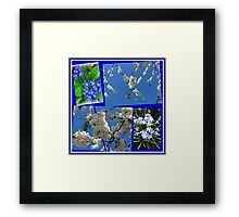 Beautifully Blue - Blossoms and Flowers of Spring Collage Framed Print
