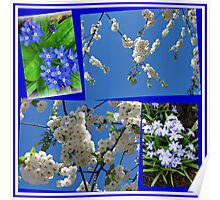 Beautifully Blue - Blossoms and Flowers of Spring Collage Poster