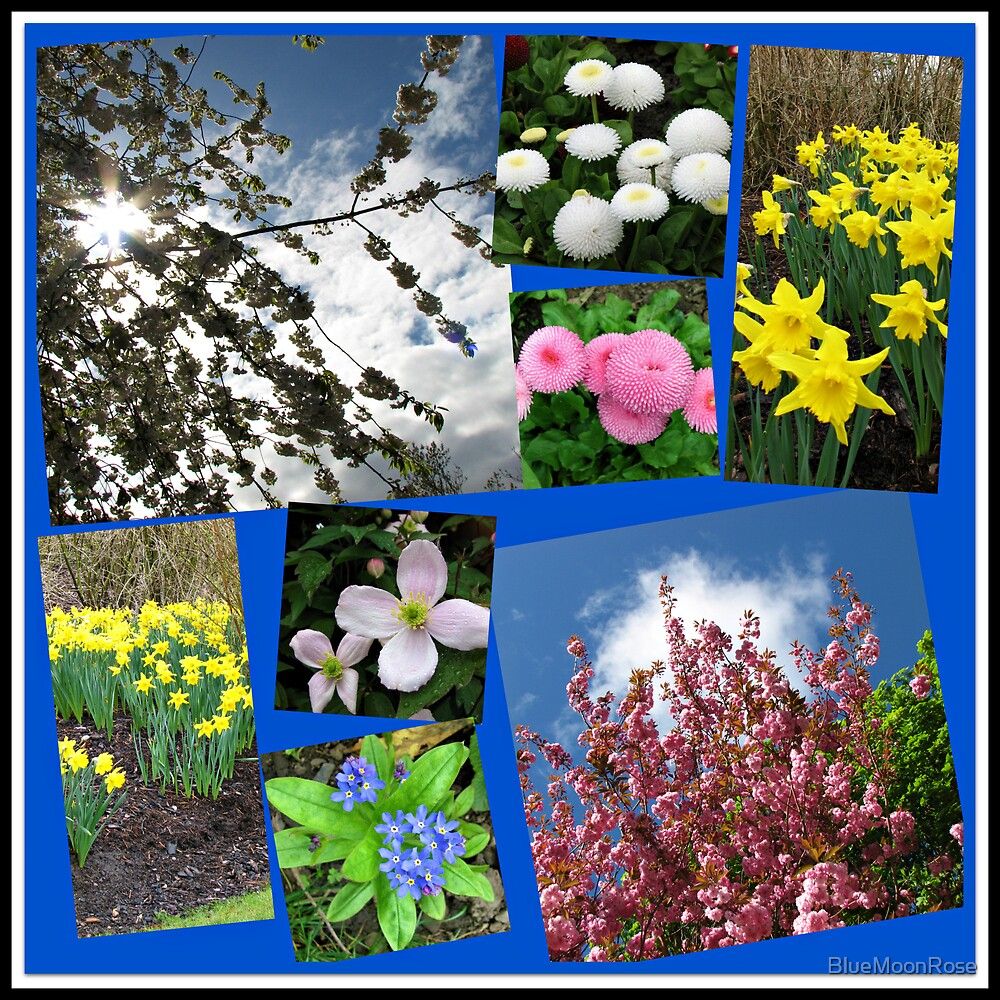 Glories of Spring Collage by BlueMoonRose