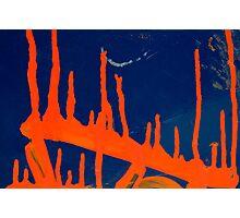 Orange Dribble- Burning Forest Photographic Print