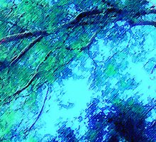 Abstracted Branches, Leaves and Sky – May 11, 2010 by Ivana Redwine