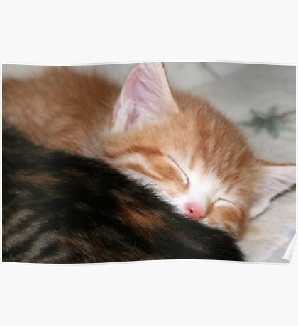 Little Sleepy Head Poster