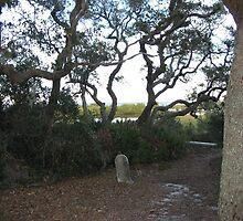 Dusk at Atsena Otie Key in Florida  by rhianana