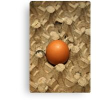 egg Canvas Print