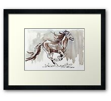 A handful of Southerly wind ... Wild horses in South Africa Framed Print